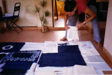 Carmen Artigas Indigo Samples