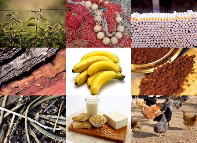 Uncommon Eco Fabrics