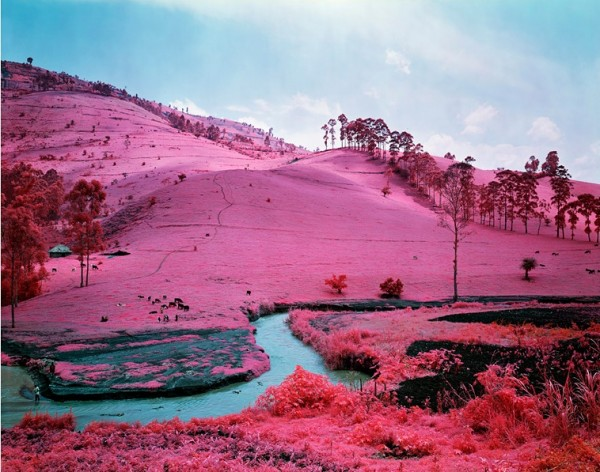 Richard Mosse Infra