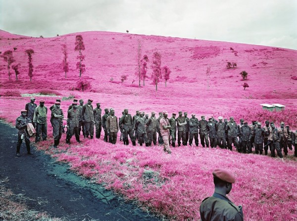 Richard Mosse Infra3