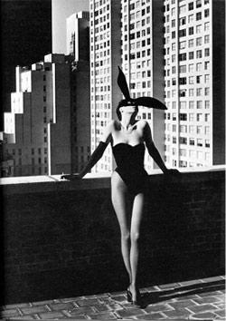 Helmut Newton Bunny