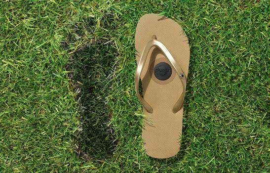 Pluggz Sandals