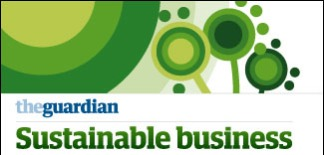 The Guardian Sustainable Business