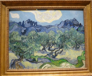 Vincent Van Gogh The Olive Trees 1889