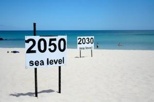 2050 Sea Level